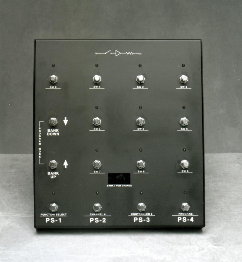 Gitarren & Bässe Custom Audio Electronics Rs-10